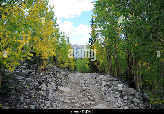 Jeep trail stock photos jeep trail stock images alamy jeep trail from near st elmo to grizzly lake the trail is extremely rugged and sciox Gallery