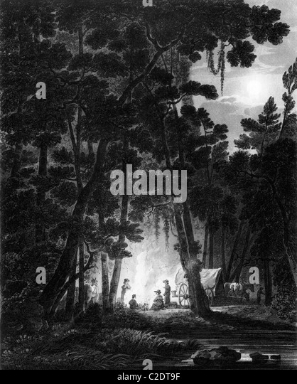 Stock Photos Stock Images Alamy - Forest map us 1820
