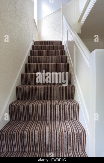stairs with brown striped carpet stock image