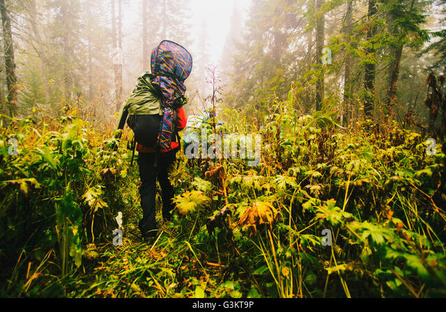 Rear View Of Hiker Carrying Backpack And Guitar In Forest
