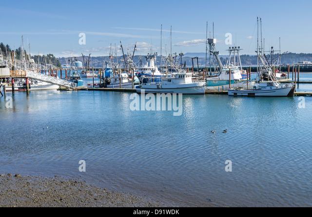 Port Nelson Newport Beach