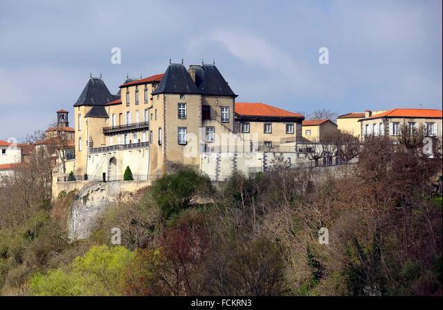 france auvergne view castle chateau stock photos france. Black Bedroom Furniture Sets. Home Design Ideas