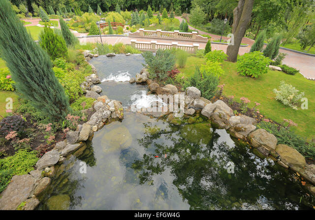 Pond garden fish stock photos pond garden fish stock for Golden ornamental pond fish crossword