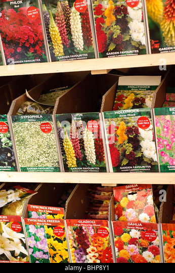 packets of flower seeds on sale in garden centre shop uk stock image