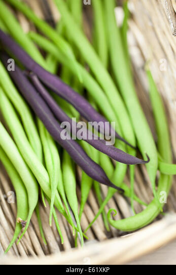 how to cut french beans