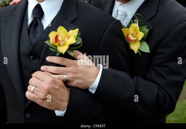 hands of gay couple with wedding rings stock image - Gay Wedding Rings