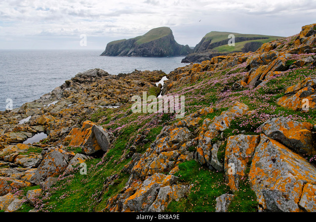 Sheep Rock Fair Isle Scotland Stock Photos & Sheep Rock Fair Isle ...