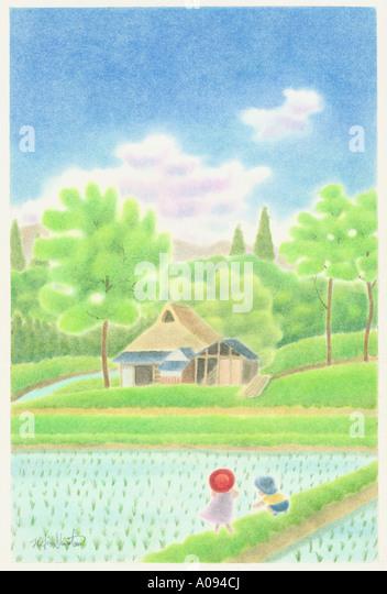 Paddy Field Illustration Stock - 57.9KB