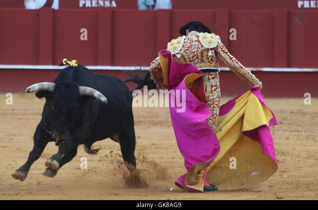 an overview of the spectacle and tradition of bullfighting el toro bravo in spain Muriel feiner, author of la mujer en el mundo del toro  view of the bullfighter's life and of the fiesta brava (wild feast) itself, never seen by the spectator.