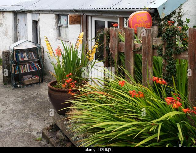 Gladioli Uk Stock Photos Gladioli Uk Stock Images Alamy