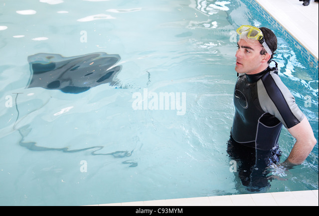 Diving Into Pool Wetsuit Stock Photos Diving Into Pool