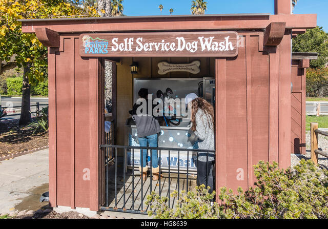 Dog wash station stock photos dog wash station stock images alamy a female employee washes a dog at the county of santa barbara public facility for dog solutioingenieria Gallery