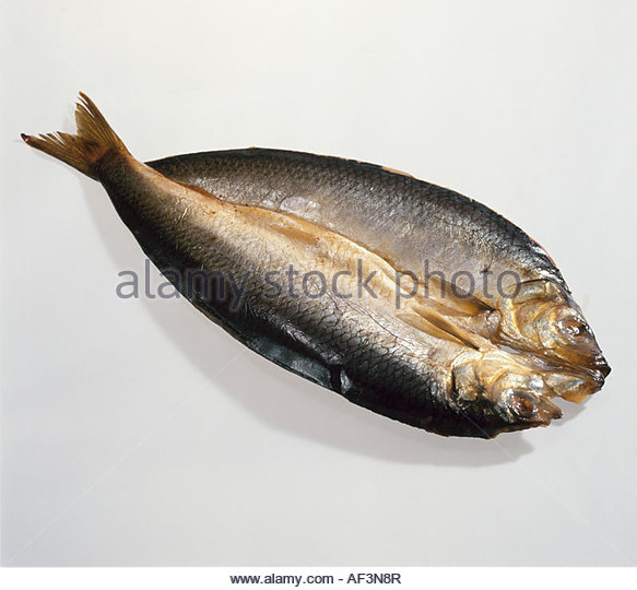 Kipper stock photos kipper stock images alamy for Smoked herring fish