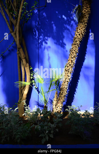 Marrakech morocco jardin majorelle stock photos for Jardin yves saint laurent