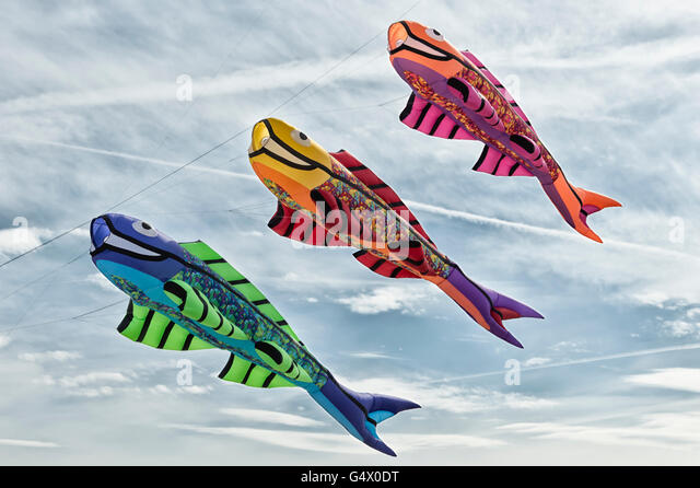 Koi kites stock photos koi kites stock images alamy for Koi fish kite
