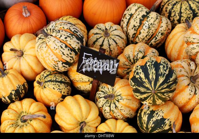 Pumpkin Festival Pumpkins Stock Photos & Pumpkin Festival ...
