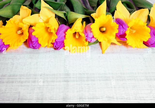 Frühlingsstrauß frühlingsstrauß stock photos frühlingsstrauß stock images alamy