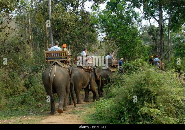 Jungle Trek Stock Photos & Jungle Trek Stock Images - Alamy