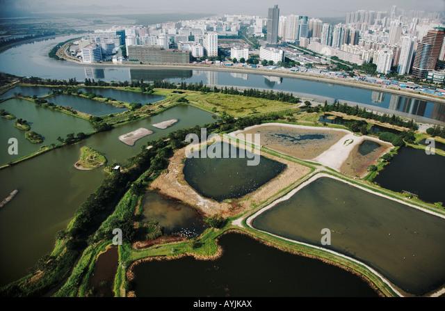 aerial-view-of-fish-ponds-in-mai-po-natu