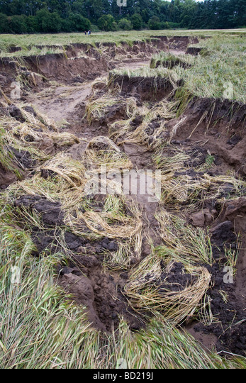 Soil erosion damage stock photos soil erosion damage for Soil erosion causes