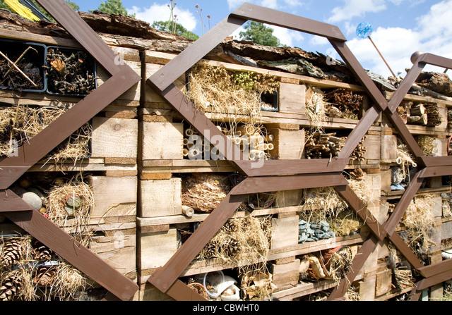 Pallets Garden Stock Photos Pallets Garden Stock Images
