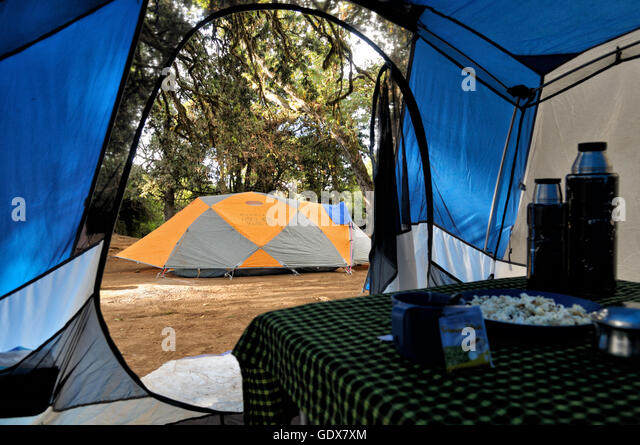 Inside mess tent during the afternoon tea time at Big Tree C& (or Forest C& & Mess Tent Stock Photos u0026 Mess Tent Stock Images - Alamy