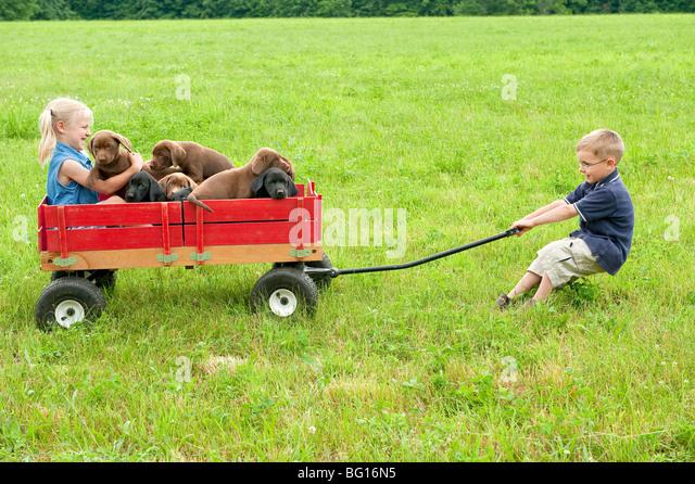 Boy Pulling Wagon : Child pulling wagon stock photos