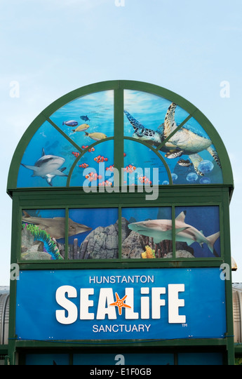 Hunstanton Sea Life Sanctuary - Stock Image