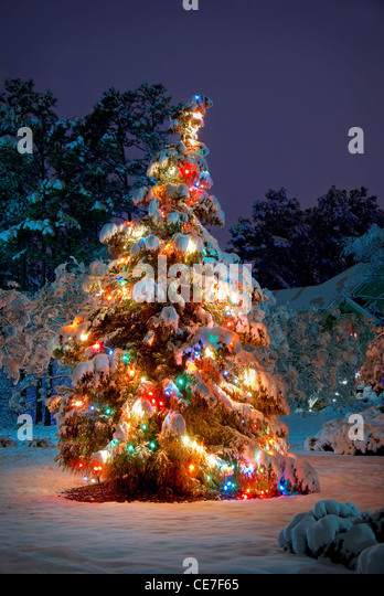Christmas tree snow lights outdoors stock photos