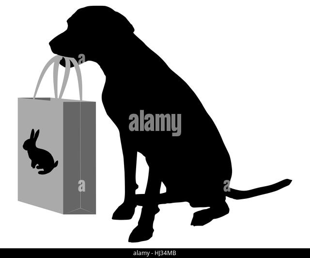 Jagdhund Stock Photos & Jagdhund Stock Images - Alamy