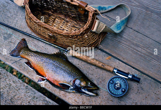 fly fishing still life rod stock photos & fly fishing still life, Fly Fishing Bait