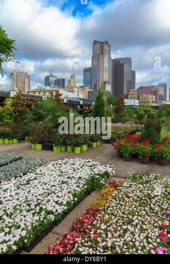 Colourful, Dallas, Farmers Market, Garden Center, Nursery, Ruibal, Skyline,