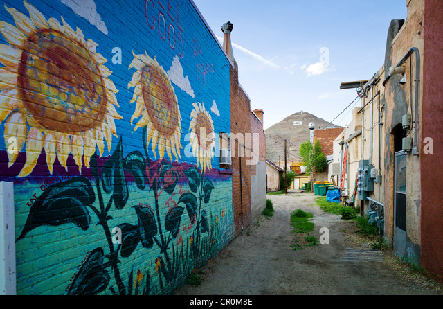 Colorful Murals Painted On The Brick Wall Of A Building In Historic  Downtown District, Small