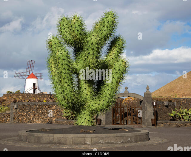 giant green cactus sculpture outside jardin de cactus designed by csar manrique guatiza lanzarote