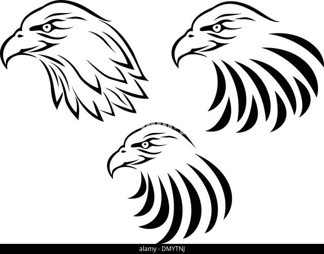 Hawk Clipart Stock Photos & Hawk Clipart Stock Images - Alamy