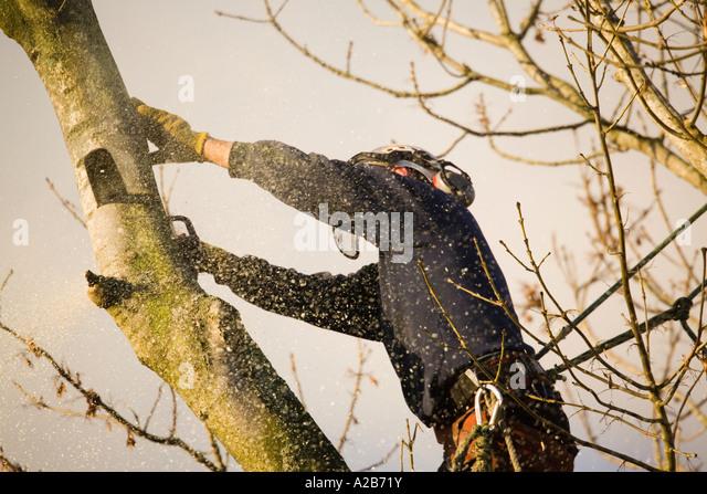 Baum Kletter Gurt : Kunststoff blume affe baum swing sitz u mit umbau gurt
