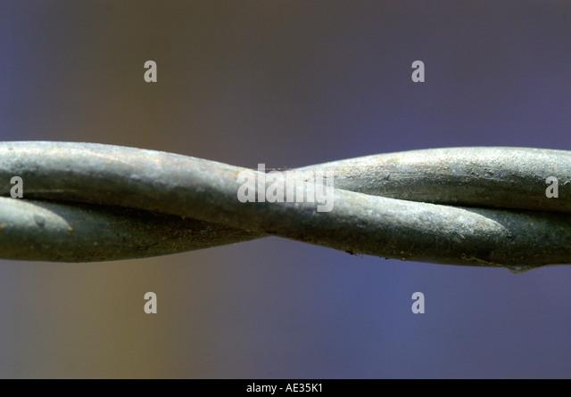 Beste Twisted Double Loop Drahtzaun Ideen - Elektrische ...