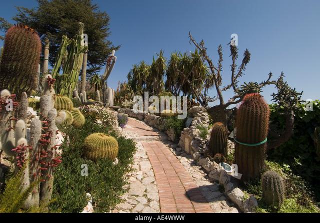 Botanic Garden Jardin Exotique Eze Stockfotos & Botanic Garden ...