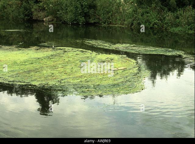 watercourse stockfotos watercourse bilder alamy. Black Bedroom Furniture Sets. Home Design Ideas