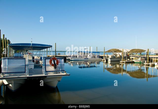 Everglades Tour Boote