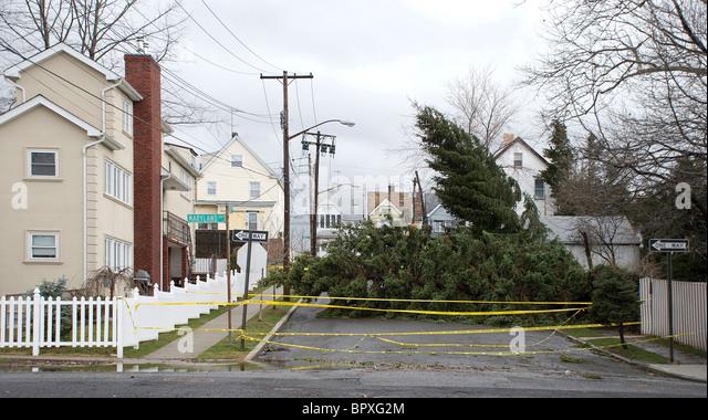 tree fallen across road stockfotos tree fallen across. Black Bedroom Furniture Sets. Home Design Ideas