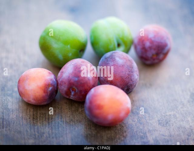 Plums stockfotos plums bilder alamy for Lila und grun mischen