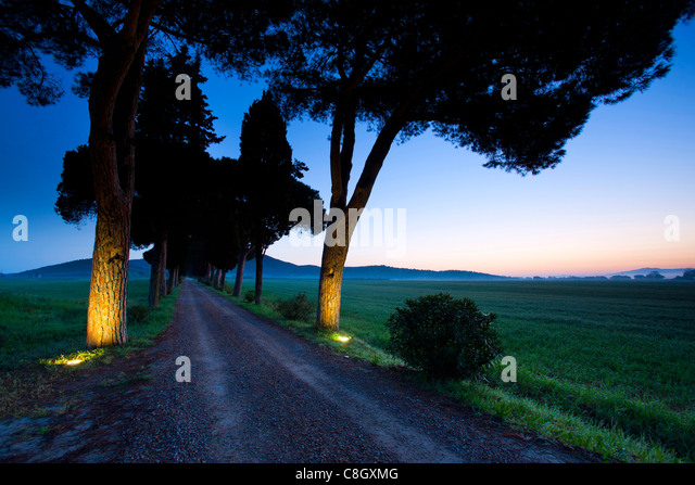 maremma italy stockfotos maremma italy bilder alamy. Black Bedroom Furniture Sets. Home Design Ideas