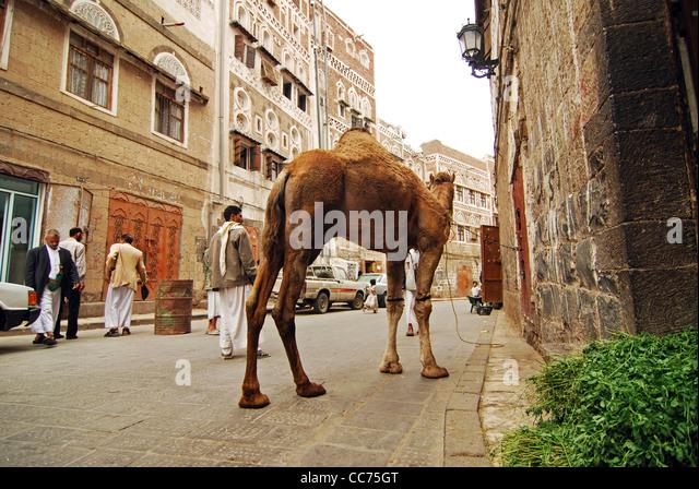 Sanaa Building Stockfotos & Sanaa Building Bilder