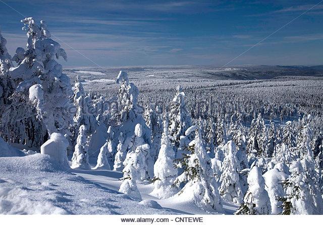 Fichtelberg Erzgebirge Winter Stockfotos &amp- Fichtelberg Erzgebirge ...