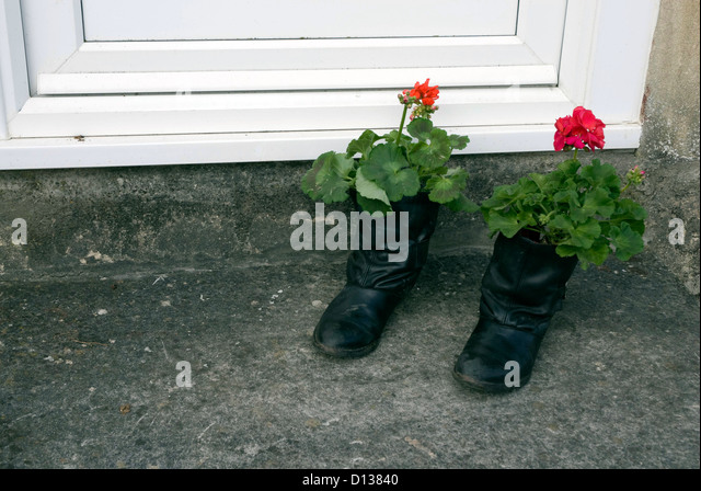 flowers in old boots stockfotos flowers in old boots. Black Bedroom Furniture Sets. Home Design Ideas