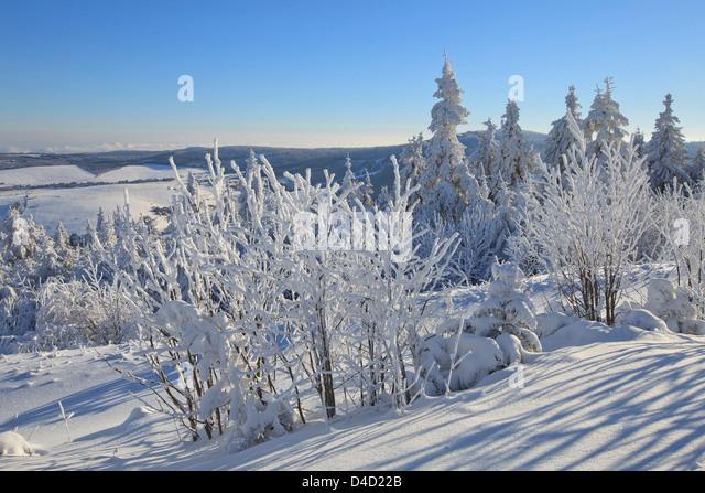 Winterport &amp- Winterurlaub im Erzgebirge - Hotel Forstmeister ...