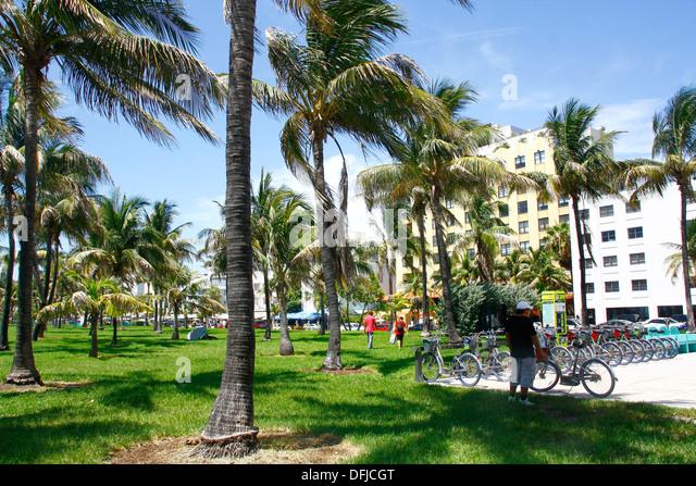 Miami Hotels On Lummus Beach