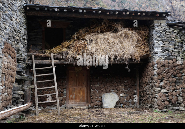 cattle dung stockfotos cattle dung bilder alamy. Black Bedroom Furniture Sets. Home Design Ideas