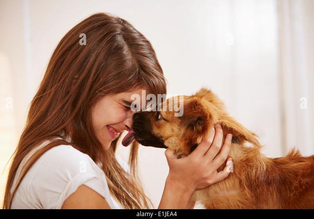 Pussy von einem Hund geleckt